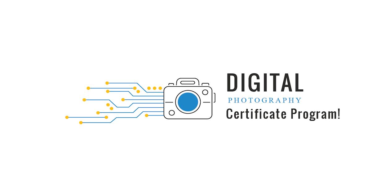 certificate digital program arts